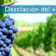 El Ministerio de Agricultura, Alimentación y Medio Ambiente y el sector vitivinícola acuerdan no recurrir a la destilación de vino de la campaña 2013-2014